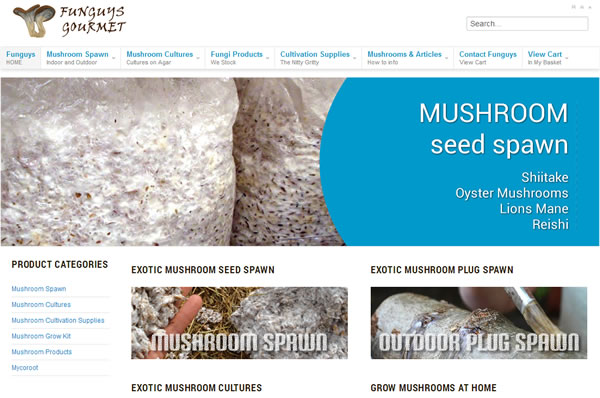 funguys mushroom spawn supplier